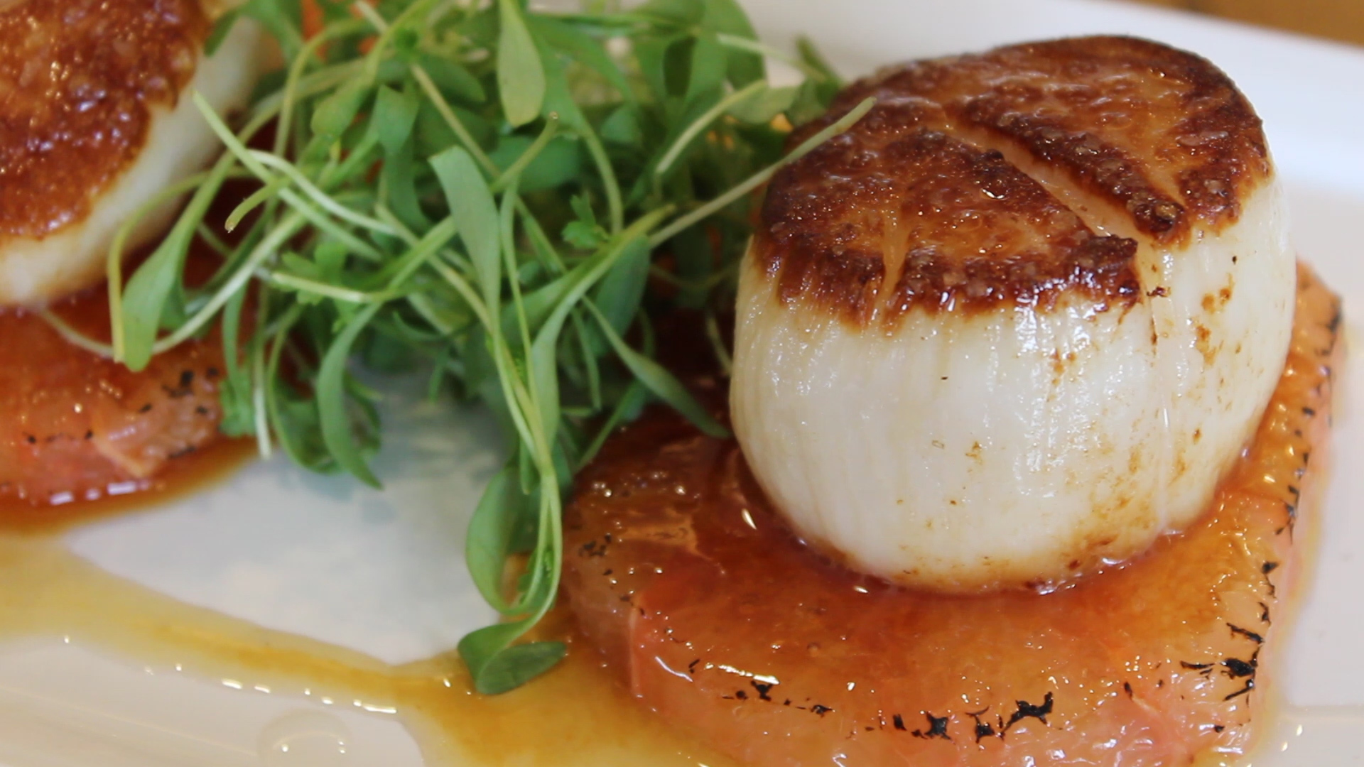 Seared Scallops on bruleed grapefruit