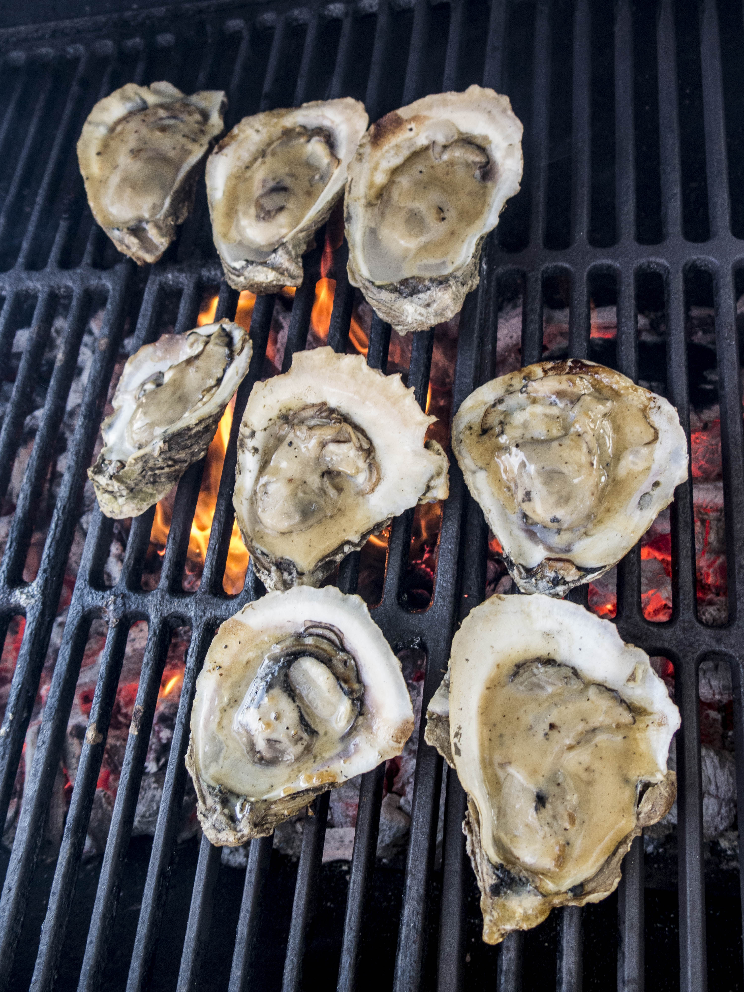 Plenty of Oysters and ways to eat them.